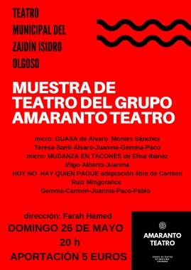 Teatro Municipal del Zaidín Isidro Olgoso